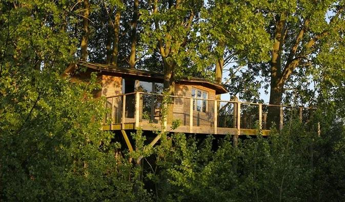 Photo de cabane perchée dans les arbres